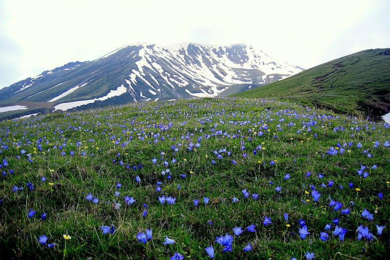 ۱۰ فرصت عالی برای طبیعت گردی یک روزه در گرجستان