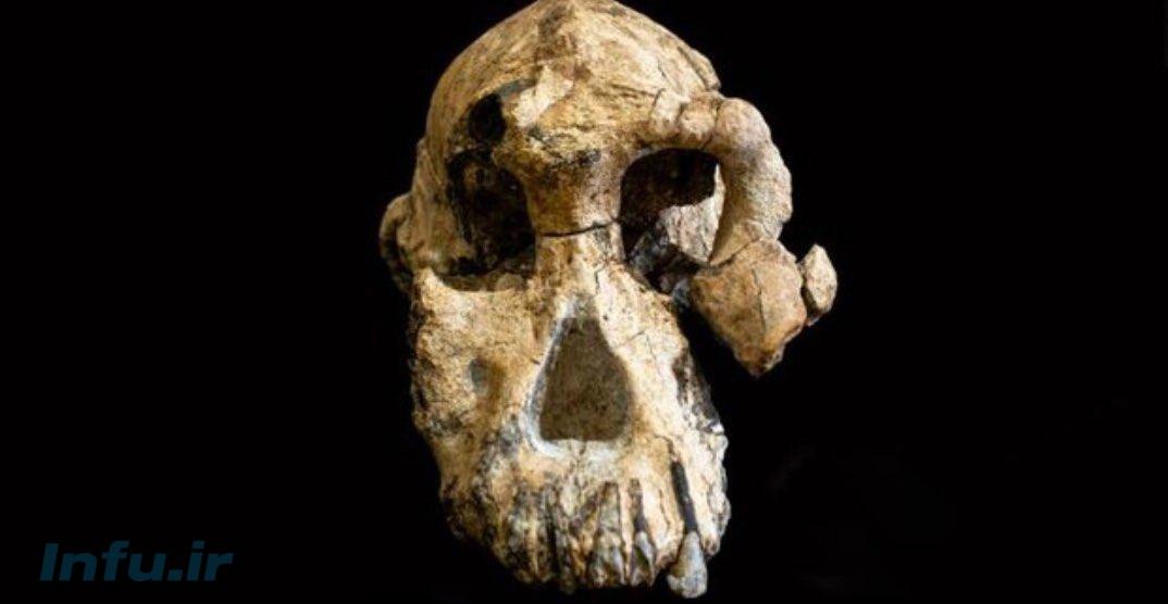 چهره قدیمیترین انسانهای اولیه