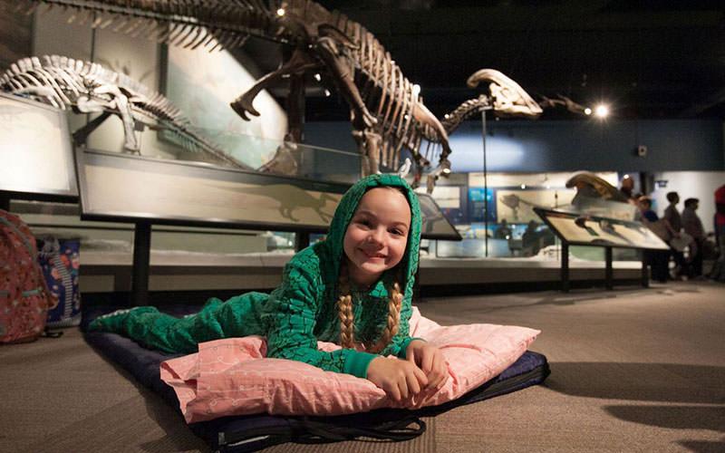 موزه فیلد شیکاگو